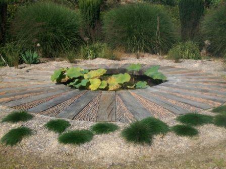 le bassin au Lotus